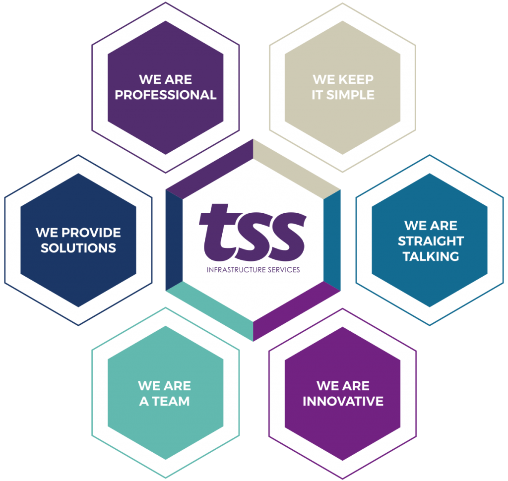 Culture hexagons with the TSS values